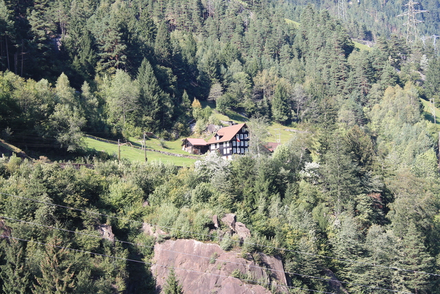Nice Swiss house on the mountain side